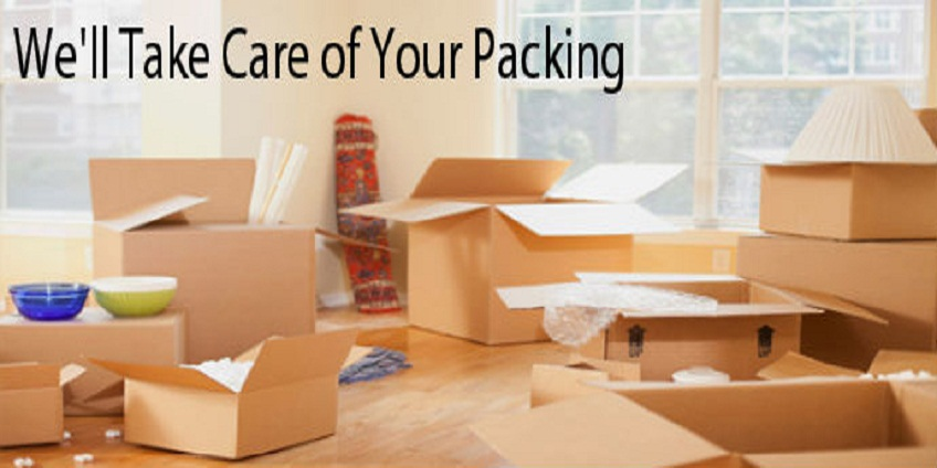 packing and moving Services Delhi